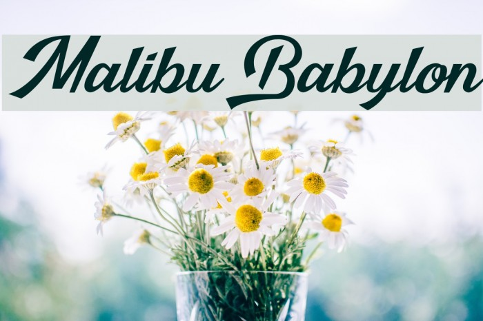 Malibu Babylon Schriftart examples