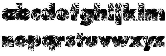 Marijuana Font Litere mici