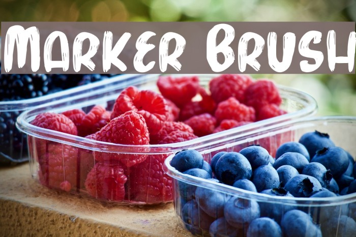Marker Brush फ़ॉन्ट examples