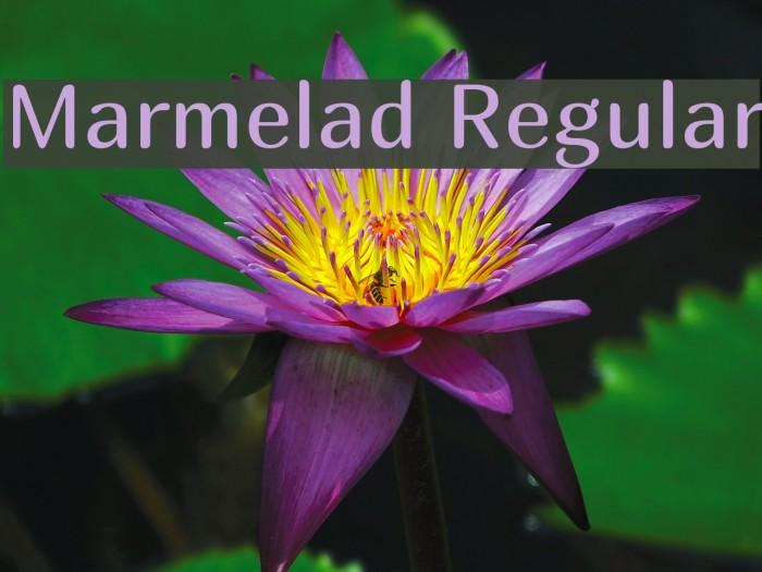 Marmelad Regular Fonte examples