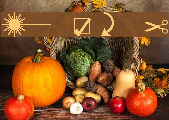 Martin Vogel's Symbols Font examples