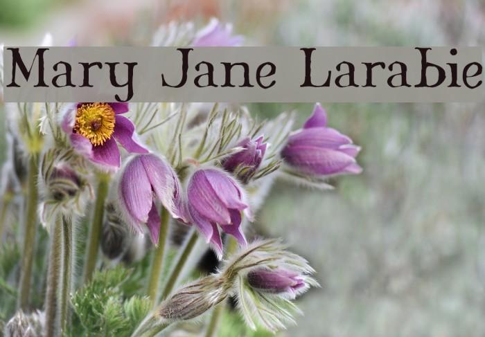 Mary Jane Larabie Font examples