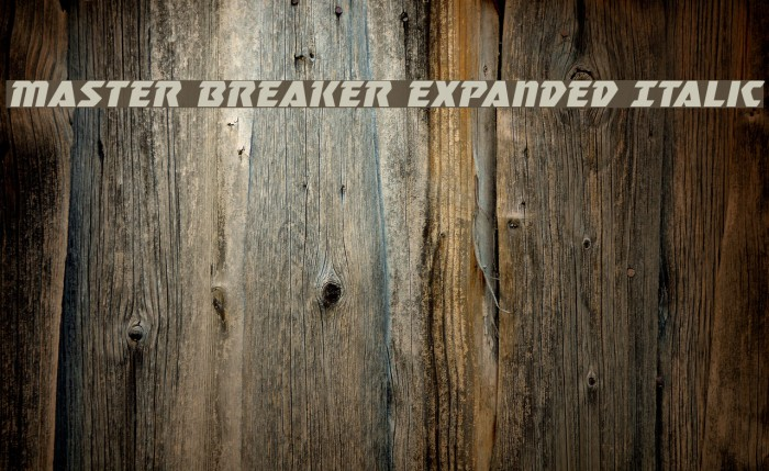 Master Breaker Expanded Italic Font examples