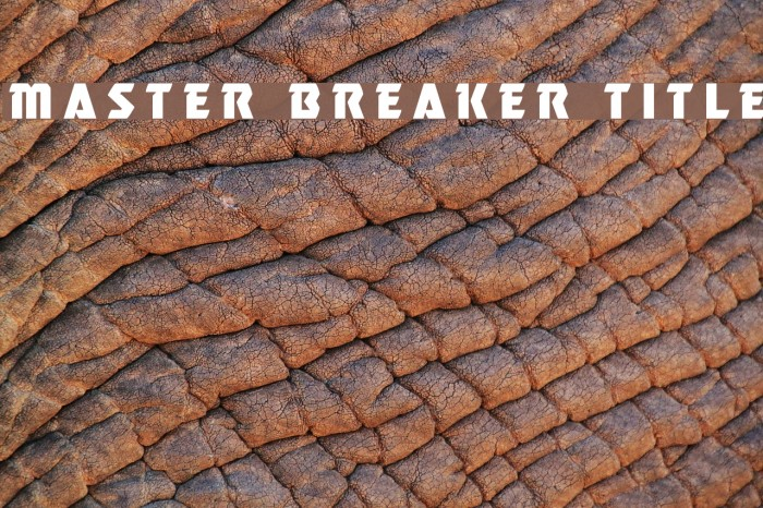 Master Breaker Title Font examples