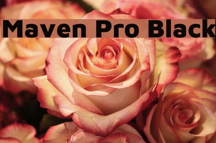 Maven Pro Black Font examples