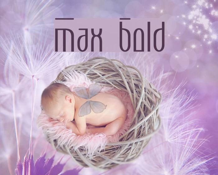 Max  Bold Font examples