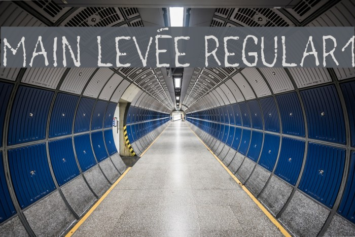 main lev�e regular1 Font examples