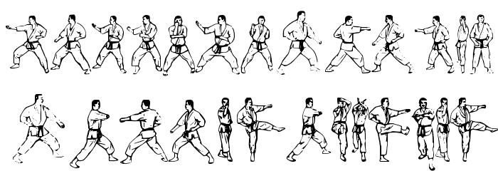 McCoy Dingbat Karate फ़ॉन्ट अपरकेस