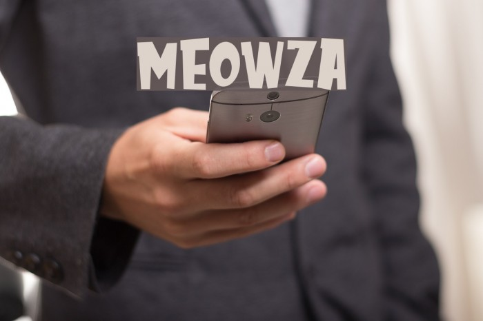 MEOWZA Fonte examples