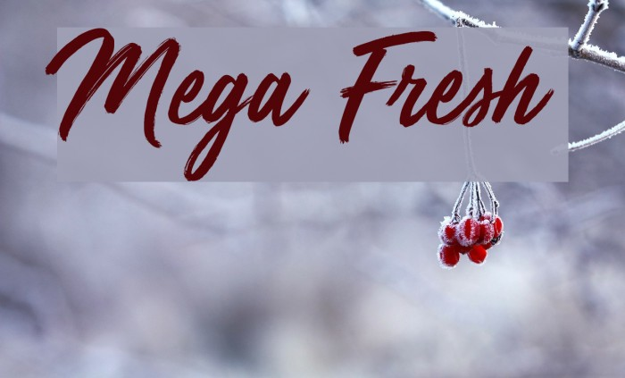 Mega Fresh Шрифта examples