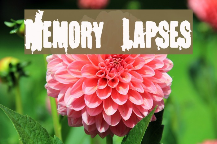 Memory Lapses Fonte examples
