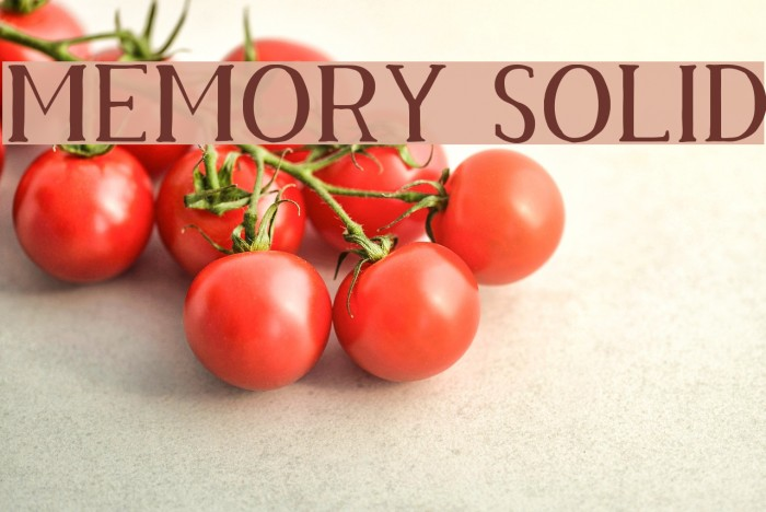 Memory Solid Font examples