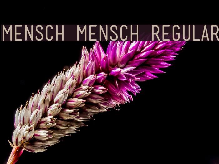 Mensch Mensch Regular Font examples
