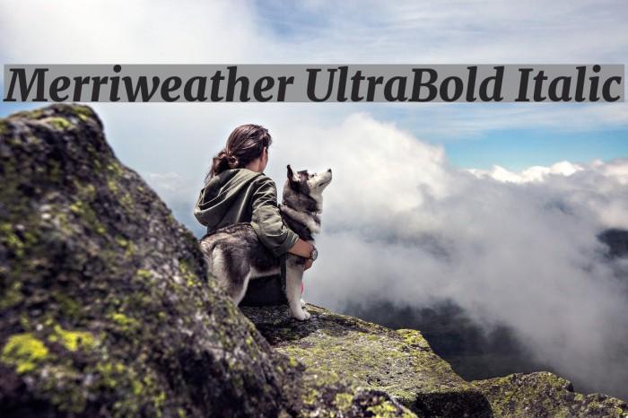 Merriweather UltraBold Italic Шрифта examples