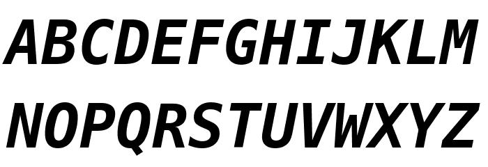 Meslo LG L DZ Bold Italic Font Litere mari