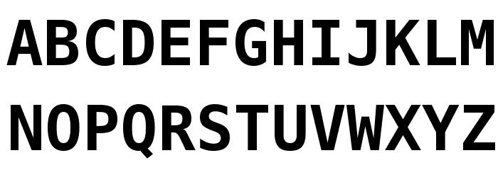 Meslo LG L DZ Bold Font UPPERCASE