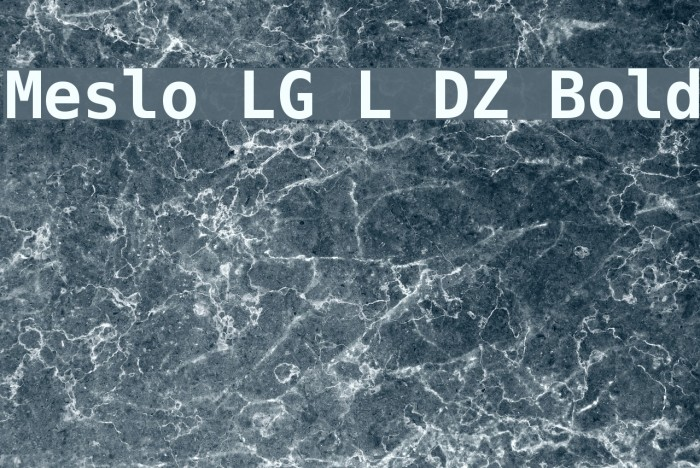 Meslo LG L DZ Bold Font examples