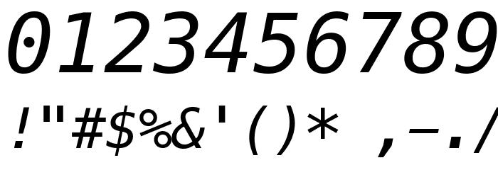 Meslo LG L DZ Italic Шрифта ДРУГИЕ символов