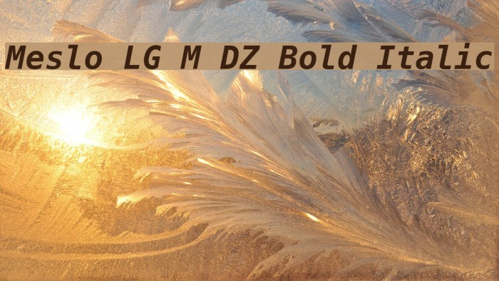 Meslo LG M DZ Bold Italic Шрифта examples