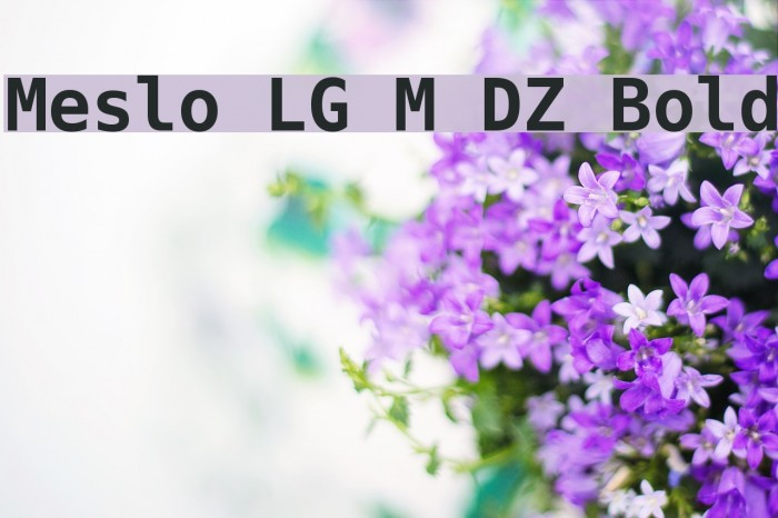 Meslo LG M DZ Bold Шрифта examples