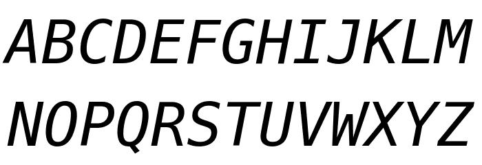 Meslo LG M DZ Italic Font Litere mari