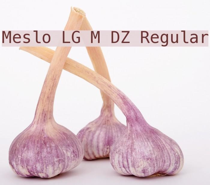 Meslo LG M DZ Regular Font examples