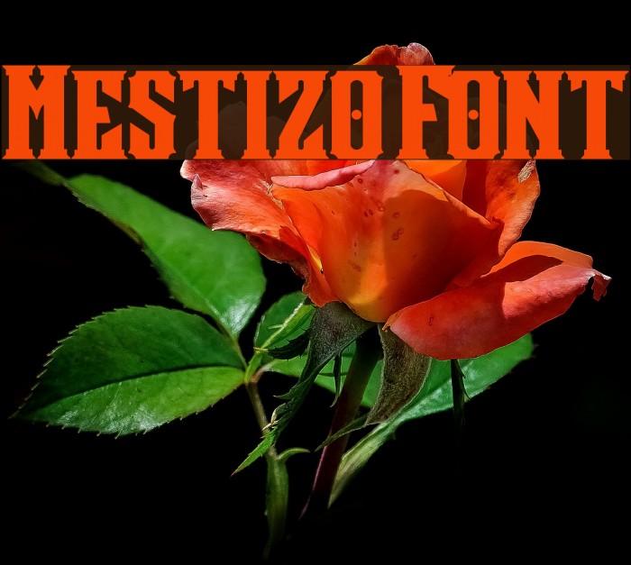 Mestizo Font Caratteri examples