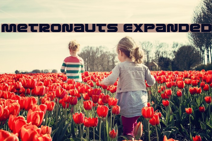 Metronauts Expanded Font examples