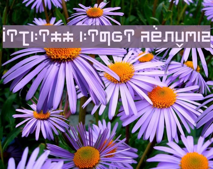 MITHILL HINDI Regular フォント examples
