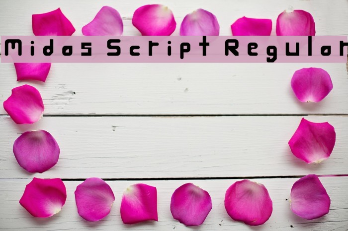 Midas Script Regular Font examples