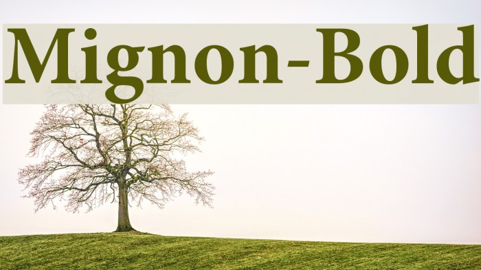 Mignon-Bold Font examples
