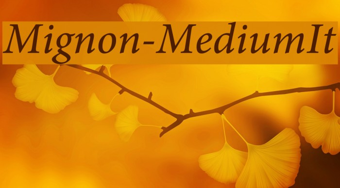 Mignon-MediumIt フォント examples