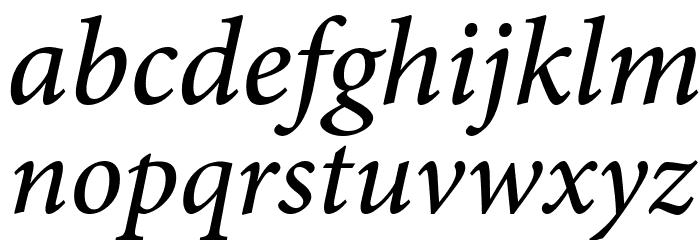 Mignon-MediumIt フォント 小文字