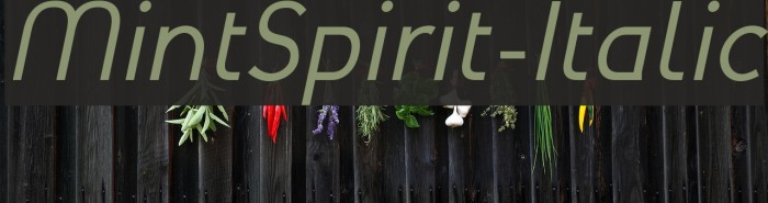 MintSpirit-Italic لخطوط تنزيل examples