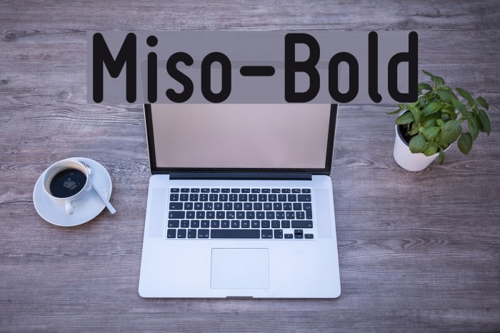 Miso-Bold Font examples