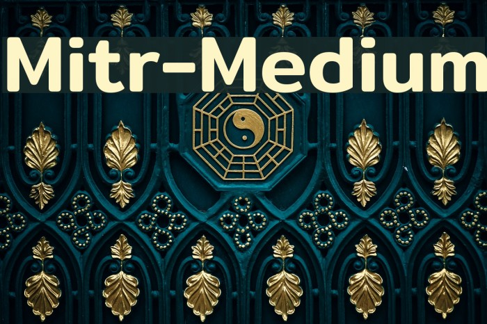Mitr-Medium Polices examples
