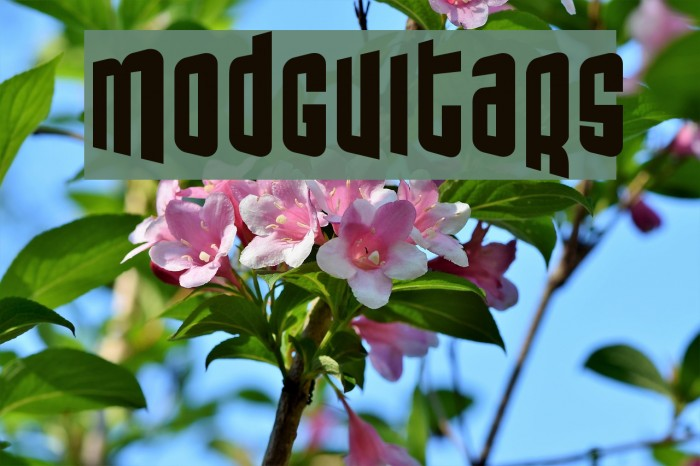 ModGuitars Font examples