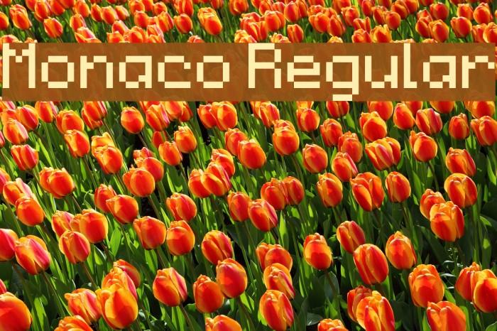 Monaco Regular Fonte examples
