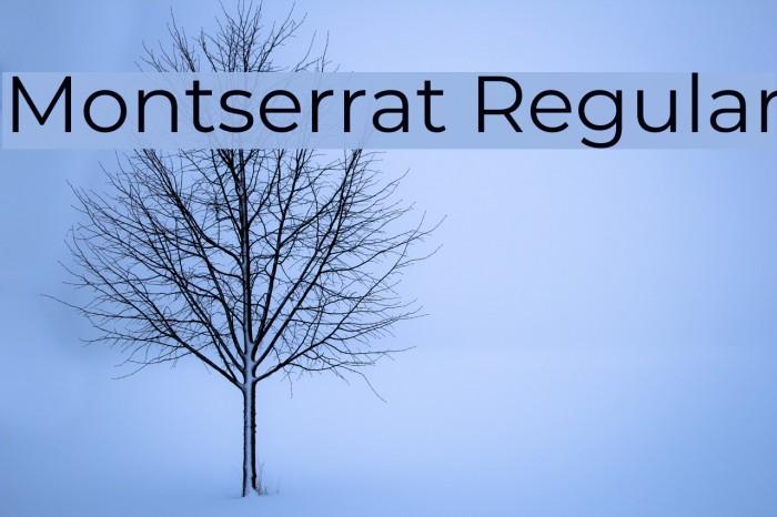 Montserrat Regular Font examples