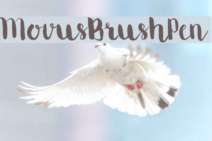 MovusBrushPen Fonte examples