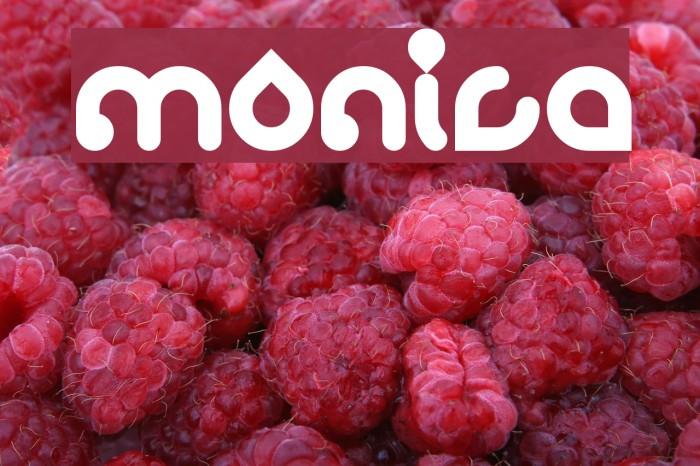 monica फ़ॉन्ट examples