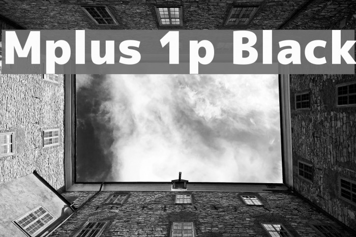 Mplus 1p Black Font examples