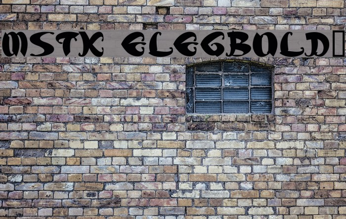 MStK ELEGBold1 Font examples