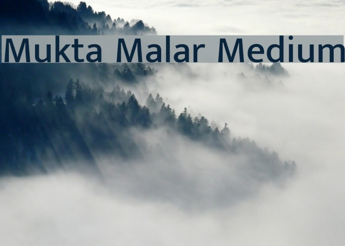 Mukta Malar Medium Font examples
