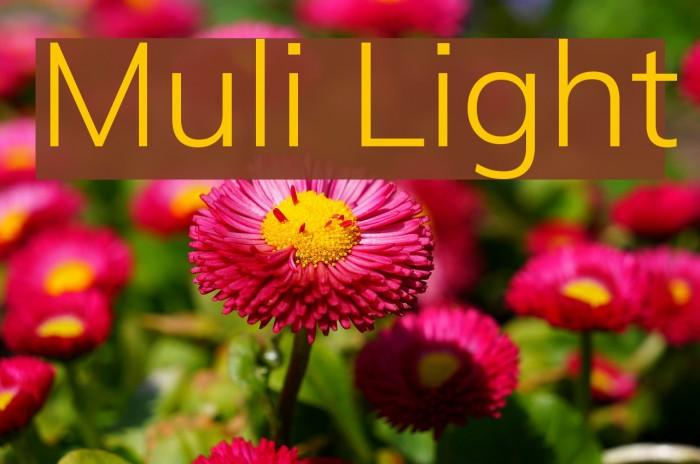 Muli Light Font examples