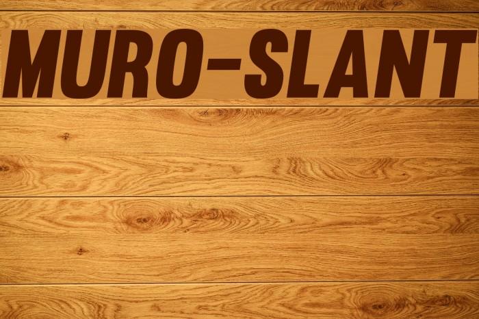 Muro-Slant Font examples