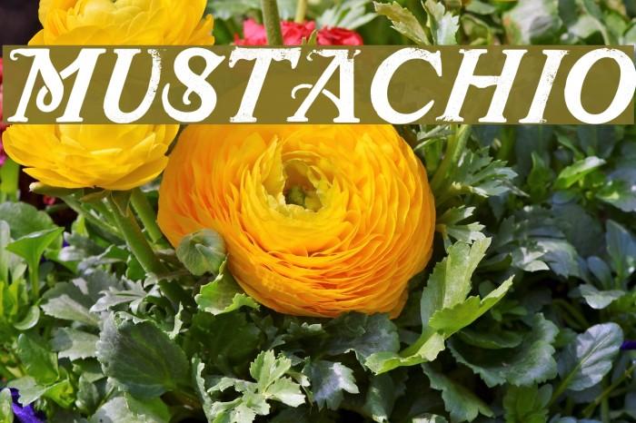 Mustachio Font examples