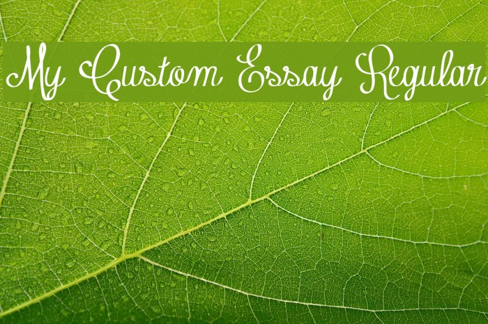 My Custom Essay Regular फ़ॉन्ट examples