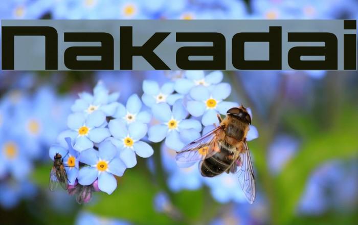 Nakadai फ़ॉन्ट examples