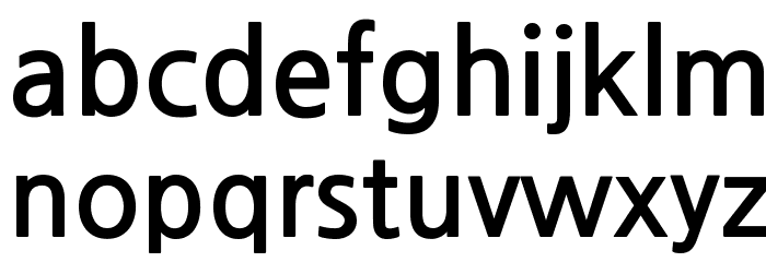 NanumGothicBold Font LOWERCASE